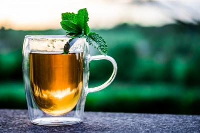 Op de thee bij de sommelier